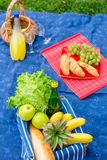 Picnic basket with fruits, bread and bottle of Royalty Free Stock Image