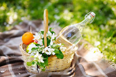 Picnic basket with fruits and flowers Royalty Free Stock Photos