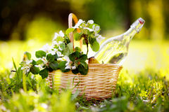 Picnic basket. With fruits, flowers and water in the glass bottle Stock Photos