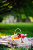 Picnic basket with fruits, food and water in the glass bottle. Outdoors leisure time for kids, family or dating couple. Sunny warm day in the summer park Stock Photo