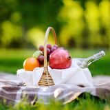 Picnic basket with fruits, food and water in the glass bottle Stock Image