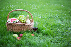 Picnic basket with fruits and glass of wine on green grass Stock Images