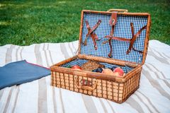 Picnic basket with fruits on the grass background royalty free stock photography