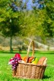 Picnic basket with fruits Stock Photos