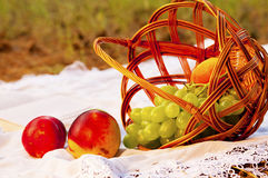 Picnic basket with fruits on grass in summer park Stock Photography