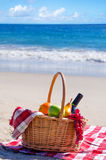 Picnic basket with fruits by the ocean Stock Image