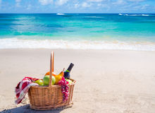 Picnic basket with fruits by the ocean Royalty Free Stock Photos