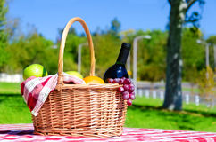Picnic basket with fruits and wine Stock Photos