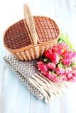 Picnic basket Stock Images