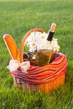 Picnic basket on the grass. Luxury Picnic basket on the grass Royalty Free Stock Photography