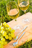 Picnic  basket on the grass. Glasses of white wine with fruits Royalty Free Stock Images