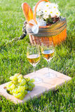 Picnic  basket on the grass. Glasses of white wine with fruits and picnic basket Stock Images