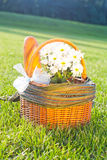 Picnic  basket on the grass. Picnic basket qith flowers on the grass Royalty Free Stock Image