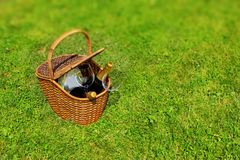 Picnic basket in the grass Stock Image