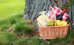 Picnic basket on grass Royalty Free Stock Photo