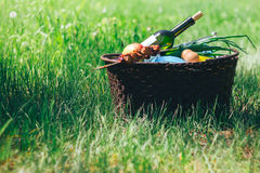 Picnic basket on grass. Picnic basket on green lawn with bottle of wine Stock Photo