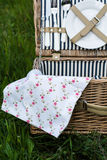 Picnic Basket in the Grass Royalty Free Stock Photo