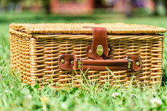 Picnic Basket Hamper In Green Grass Stock Photo