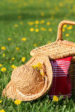 Picnic basket and hat. Picnic on the grass stock image