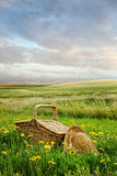 Picnic basket and hat in the tall grass Stock Images