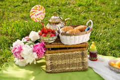 Picnic basket with items Royalty Free Stock Photo