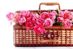 Picnic basket Stock Photo