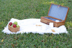 Picnic basket lunch. Shot of a picnic basket lunch Stock Image