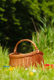 Picnic basket on meadow in green grass Royalty Free Stock Photography