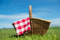 Picnic basket in nature Stock Images