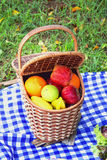 Picnic basket outdoor Stock Photos