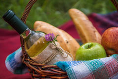 Picnic basket on the red blanket at nature. Apples, white wine a Stock Photos