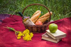 Picnic basket on the red blanket at nature. Apples, white wine, Royalty Free Stock Photo