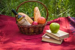 Picnic basket on the red blanket at nature. Apples, white wine, Stock Photos