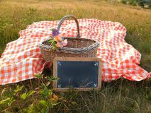 Picnic basket red checkered cloth Royalty Free Stock Image