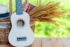 Picnic basket with Red napkin, flower and ukulele , hat women on table place, green nature background Royalty Free Stock Images