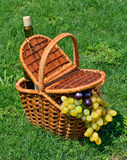 Picnic basket with ripe grape, bottle of wine on the grass Stock Photo