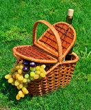 Picnic basket with ripe grape, bottle of wine on the grass Stock Photos