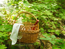 Picnic basket. Selective focus Stock Image