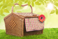 Picnic basket shot outdoor over green grass. Picnic basket made of rattan shot in meadow over blue sky Royalty Free Stock Image