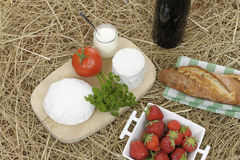 Picnic basket on straw Stock Photography