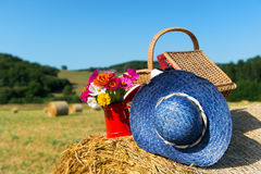 Picnic basket and summer hat in agriculture landscape Stock Photography