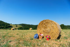 Picnic basket and summer hat in agriculture landscape Royalty Free Stock Photos