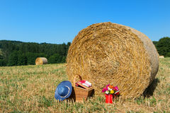 Picnic basket and summer hat in agriculture landscape Royalty Free Stock Image