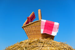 Picnic basket in summer Royalty Free Stock Photography
