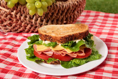 Picnic basket toasted ham and cheese sandwich Royalty Free Stock Photography