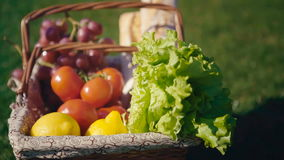 Picnic basket with vegetarian couple in park outdoor stock footage