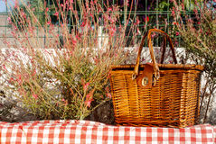 Picnic basket on the wall with red flowers Stock Photo
