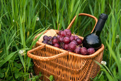 Picnic basket with wine bottle and grapes on green grass lawn. stock images