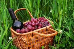 Picnic basket with wine bottle and grapes on green grass lawn. Selctive focus Stock Photo