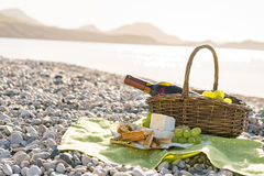 Picnic basket with wine, cheese and grapes Royalty Free Stock Photos